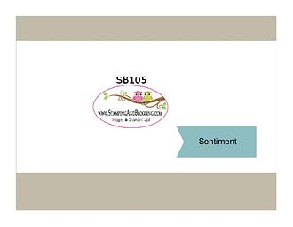 SB105-001