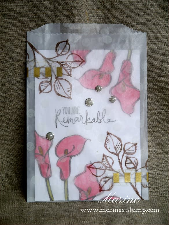 StampinUp - Marine Wiplier - CLTM - Aout15